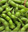 Soy, Minigarden Seeds