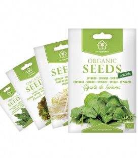 SALADS Selection, Minigarden Organic Seeds